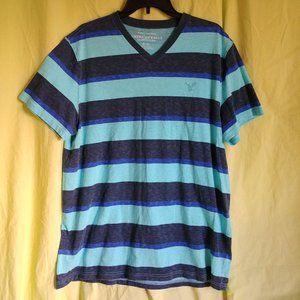 AEO Blue Striped V-neck Short Sleeved Mens T EUC
